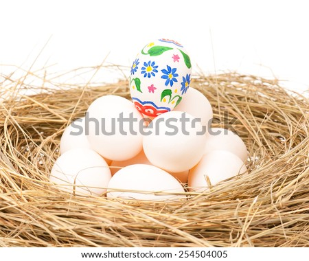 Raw and decorated eggs in a birds nest over white background - stock photo