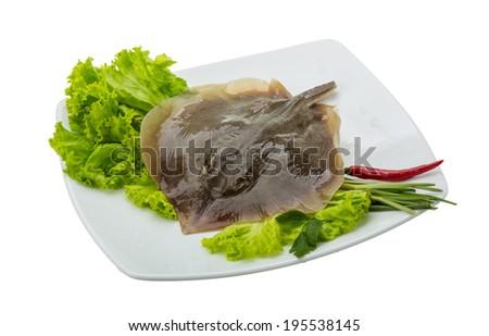Raw Batoidea ready for cooking - stock photo