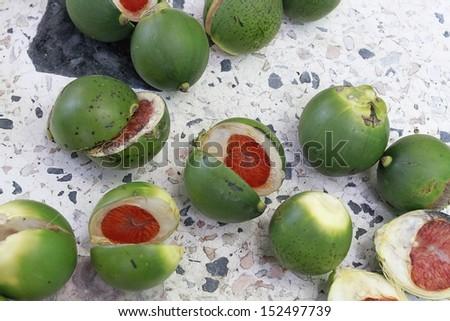 raw betel nut  - stock photo