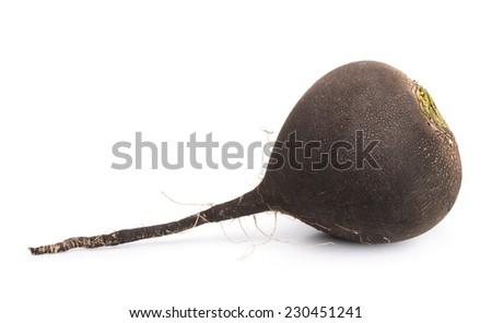 Raw black radish isolated on white - stock photo