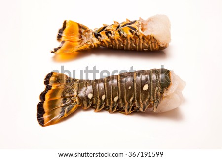 Raw Caribbean ( Bahamas ) rock lobster (Panuliirus argus) or spiny lobster tails isolated on a white studio background. - stock photo