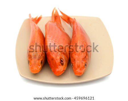raw carp fish on plate isolated on white