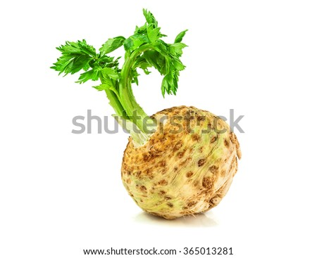raw celery root on white background - stock photo