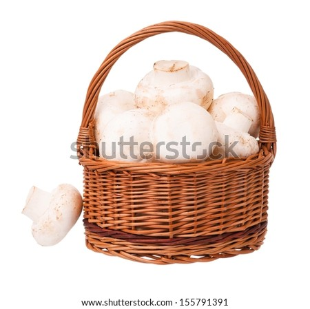 Raw champignons in the wicker basket isolated on white background - stock photo