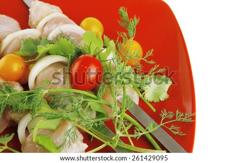 raw chicken kebabs served with on red plate - stock photo