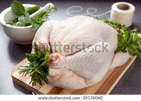 Raw chicken on a board, with fresh herbs, and trussed ready for roasting. - stock photo
