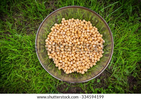 Raw chickpea beans in bowl on green grass background, vegan healthy nutrition - stock photo