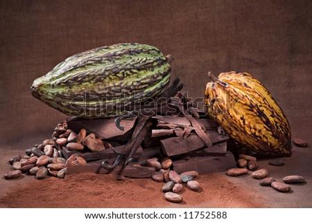Raw Chocolate assortment - stock photo