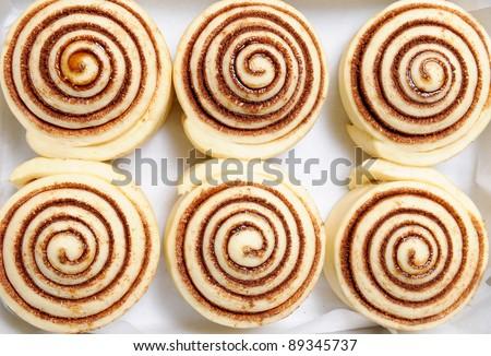 raw cinnamon buns - stock photo