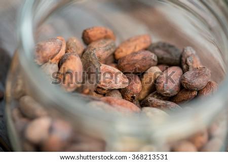 raw cocoa beans - stock photo