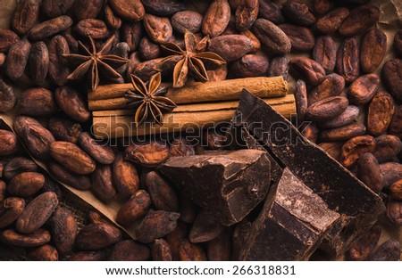 Raw cocoa beans, raw dark homemade chocolate for rawfoodists, cinnamon sticks, star anise, top view - stock photo