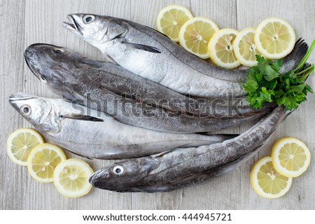 Raw cod fish with lemon slices and parsley leaves, flat lay.