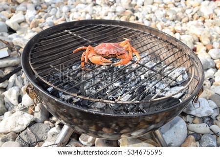 Raw crab preparing on the BBQ with charcoal on a beach
