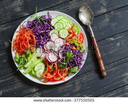 Raw crunchy colorful Coleslaw salad with red cabbage, radish, cucumber, sweet peppers, carrots, parsley and sesame seeds. Healthy vegetarian food - stock photo