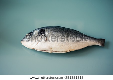Raw dorado fish, gilthead bream or sea bream isolated on the glass background - stock photo