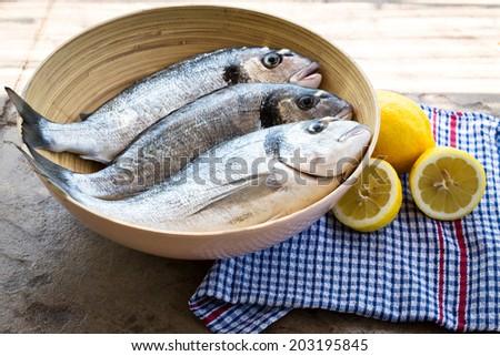 Raw Dorado fish in a bowl - stock photo