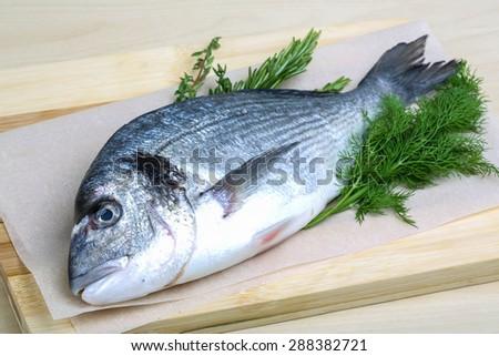 Raw dorado fish with dill, rosemary and thyme - stock photo