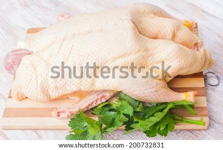 raw duck carcass - stock photo