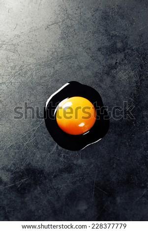 Raw egg on dark background - stock photo