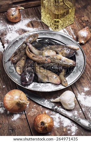 raw fish breed perciformes called bull on  background attributes kitchen before cooking - stock photo