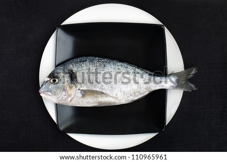 Raw fish on plate, top view. Luxurious seafood in black and white. Mediterranean gastronomy culture. - stock photo