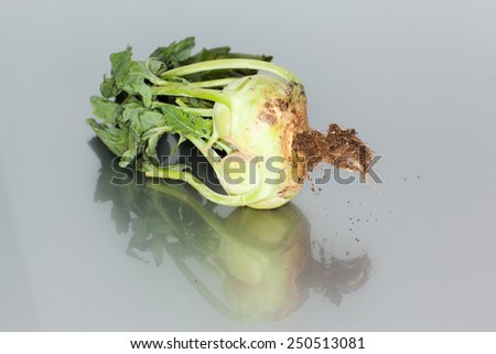 Raw food diet concept - stock photo