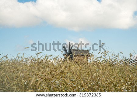 Raw food nature background Kizi. Russia.Rural landscape with windmill and reap wheat summer field  - stock photo