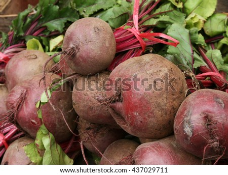 Raw fresh beet for sale in the market - stock photo