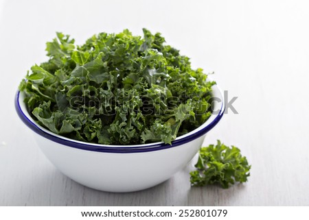 Raw fresh green kale cut to pieces in a bowl - stock photo
