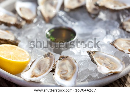 raw fresh oysters opened and served on a plate with ice - stock photo