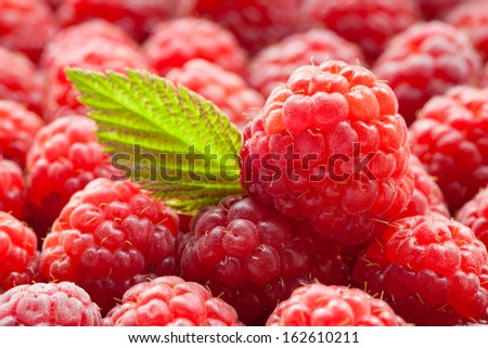 Raw fresh raspberry background