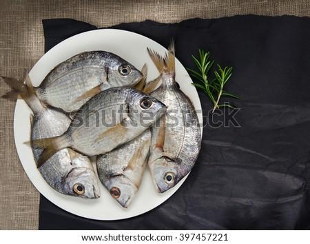raw fresh sea fish  - stock photo