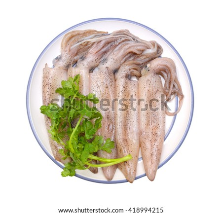 raw fresh squids on plate isolated on white  - stock photo