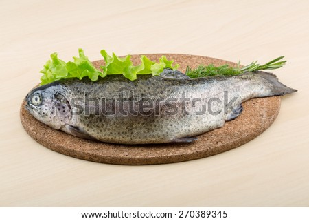 Raw fresh trout on the wood background with herbs - stock photo