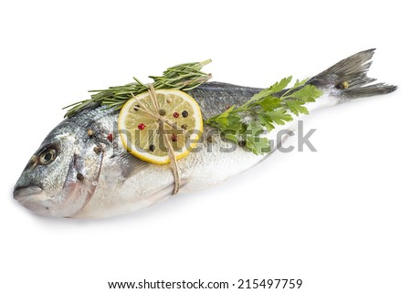 Raw Gilt-head bream fish with spices and herbs isolated on a white background