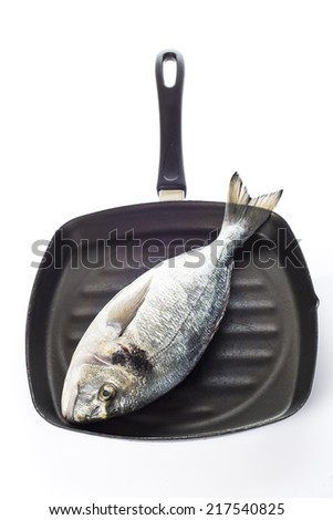 Raw gilt-head sea bream fish on a pan isolated on a white background - stock photo