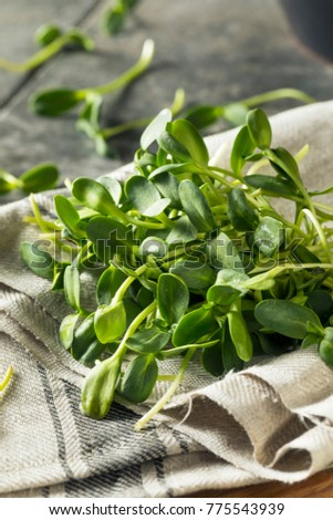 how to eat sunflower microgreens