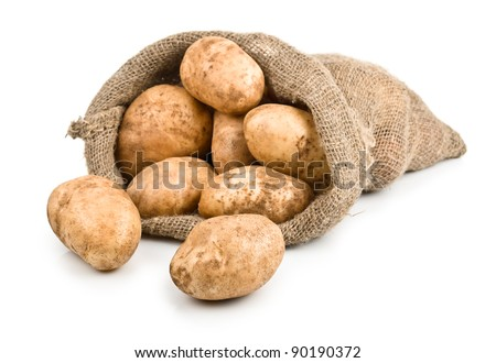 Raw Harvest potatoes in burlap sack isolated on white background - stock photo