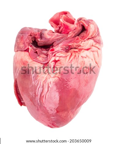 raw heart Isolated on white background