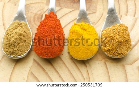 Raw indian spices - stock photo