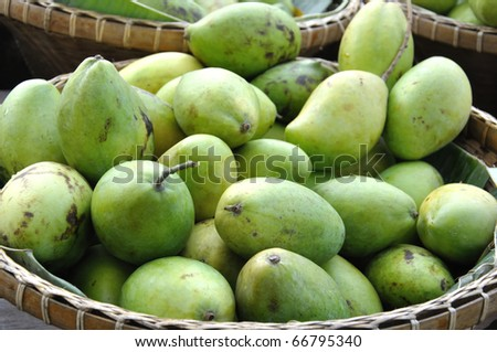 Raw mango in weaving basket - stock photo