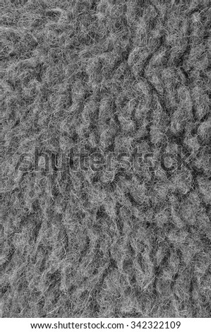 Raw Merino Sheep Wool Macro Closeup, Large Detailed Grey Textured Pattern Copy Space Background, Vertical Gray Texture Studio Shot - stock photo