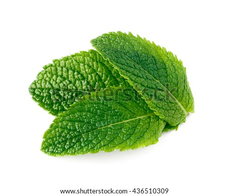 Raw mint leaves isolated on white background
