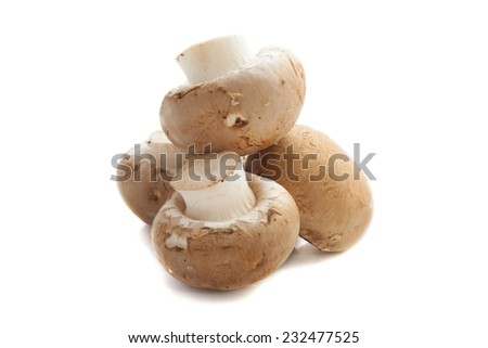 Raw mushrooms isolated on a white background - stock photo