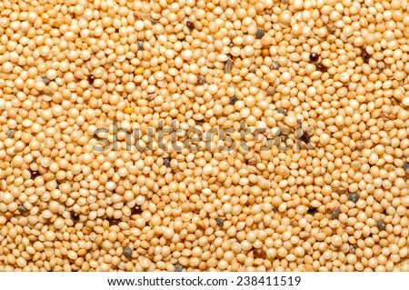 Raw organic Amaranth grains. Texture. Background.