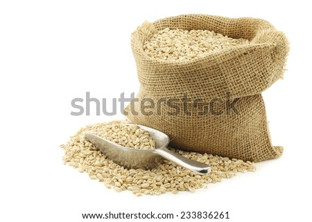 raw organic barley in a burlap bag with an aluminum scoop on a white background