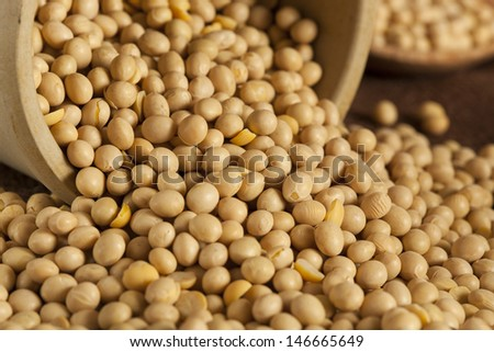 Raw Organic Dry Soy Beans against a Background