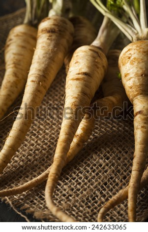 Raw Organic Parsley Root on a Background