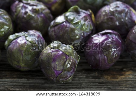 Raw organic purple Brussels sprouts set on rustic wood - stock photo