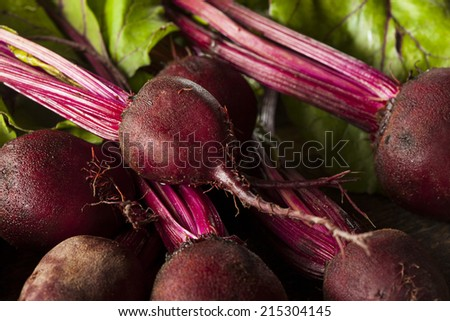 Raw Organic Red Beets Ready To Eat - stock photo